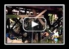 Jornal da Record - Palafitas causam destruição ao meio ambiente na Baixada Santista